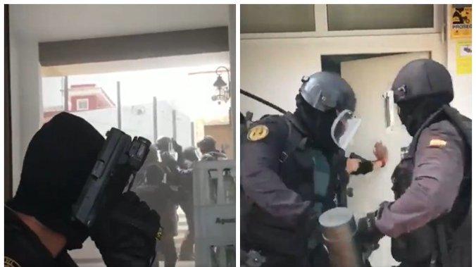 pink.rs | SRPKINJA NA ČELU NARKO-BANDE! Imala je mrežu plantaža marihuane u  Španiji, a jedna slučajnost dovela joj je POLICIJU ZA VRAT (VIDEO)